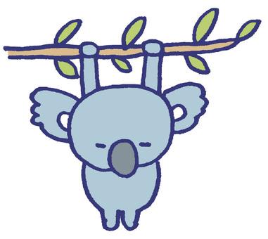 Hanging koala