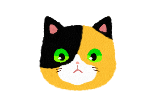 Calico face front