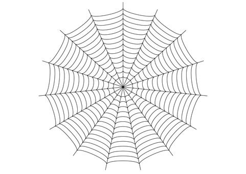 Spider web 02 transparent png