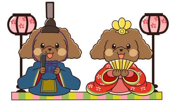 【3月】トイプードルひなまつりセット