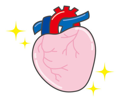 건강한 심장
