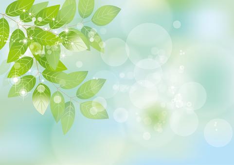 Glittering leaves & sky 33