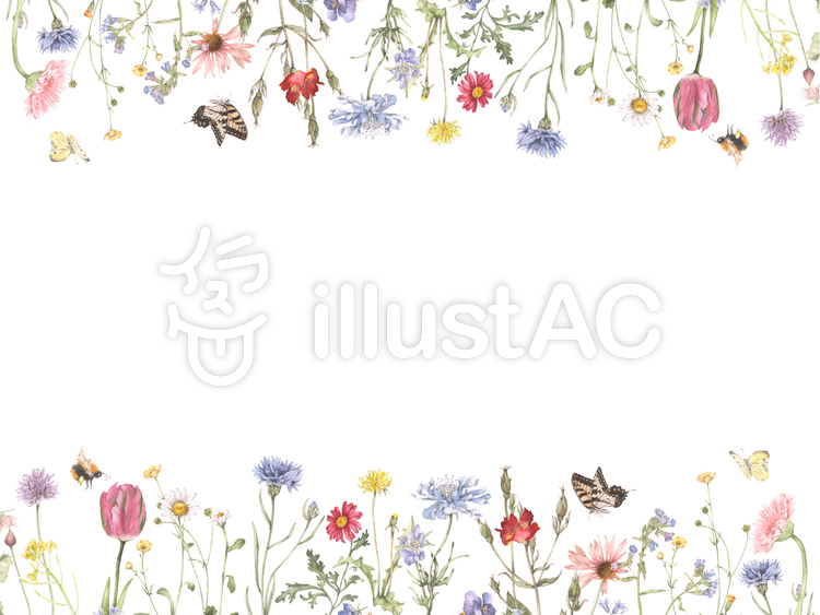 花枠188-ナチュラルガーデンの花枠のイラスト