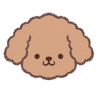 Icon-toy poodle