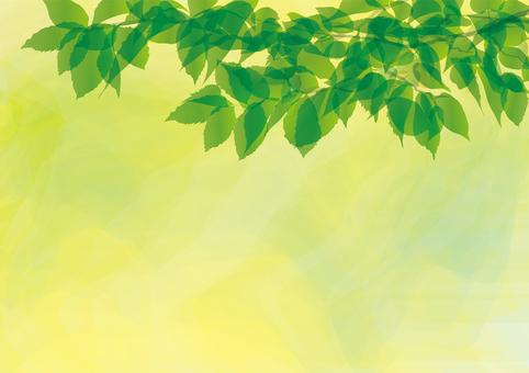 Leaf green frame framing decorative frame fresh green water color branch