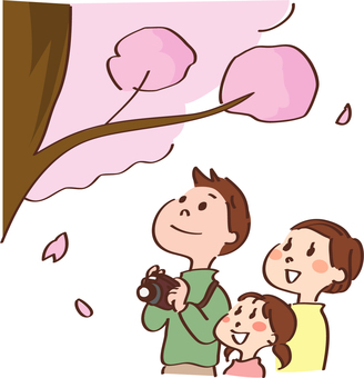 A family looking up at the cherry blossoms