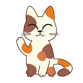Invincible cat · Cat raising hands