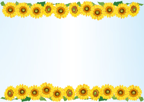 Upper and lower sunflower lines