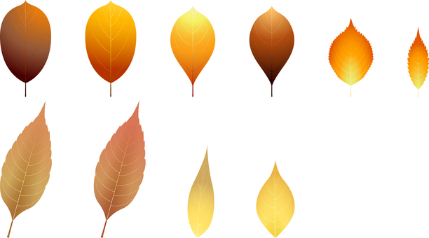 ai fall leaves set autumn and winter for fall