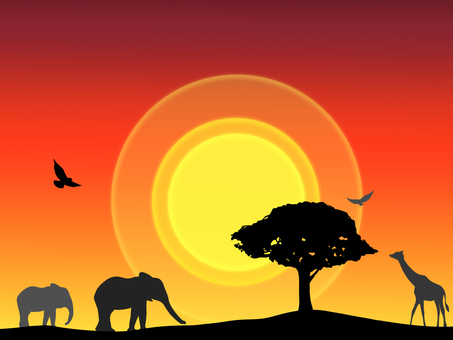 Savanna (dusk)