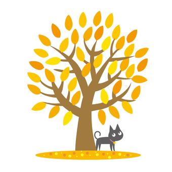 Deep fall tree and cat