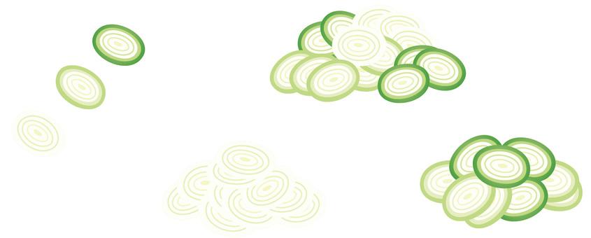 Round green onion leek: no line