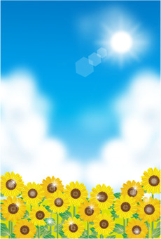 Sunflower and sun and blue sky