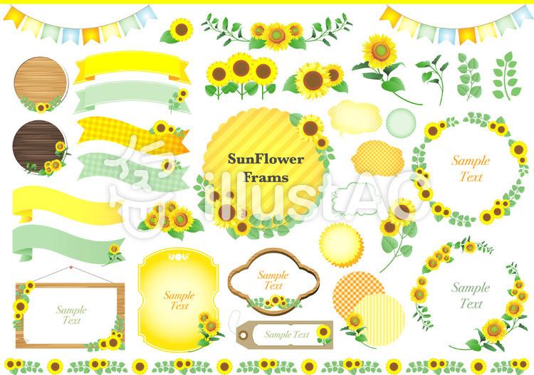 ひまわりの黄色いフレームセットのイラスト