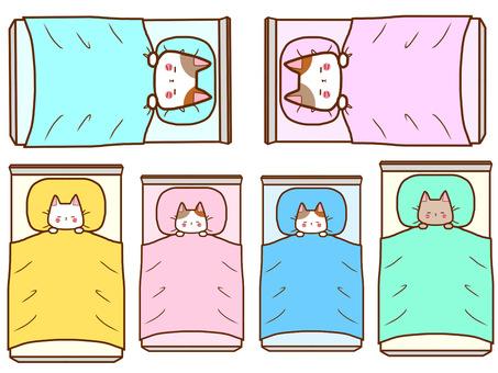 Sleeping family cat set