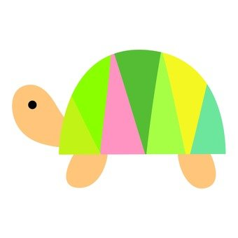 Colorful turtle 2