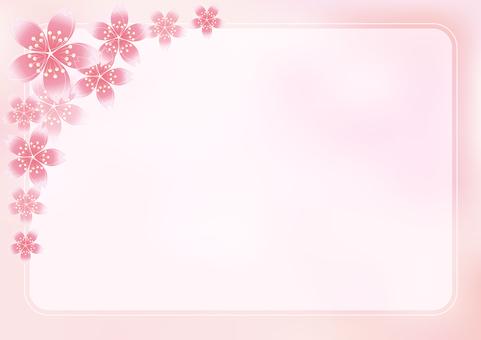 Sakura Sakura & Board 21