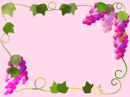 Grape frame 1.1
