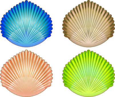Seashell 01