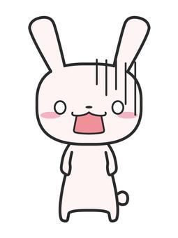 Rabbit shock