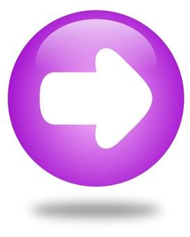 鈕扣(紫色)