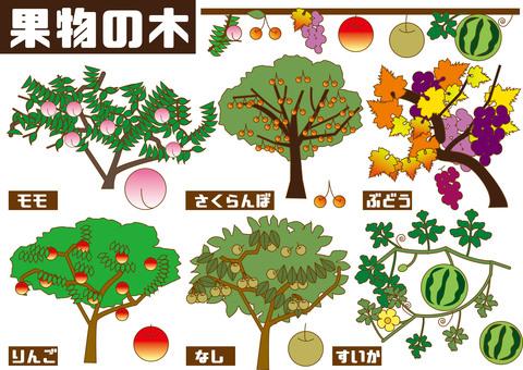 과일 나무