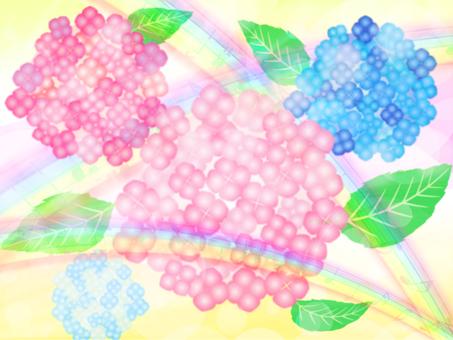 Hydrangea background 03