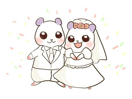 Married ham