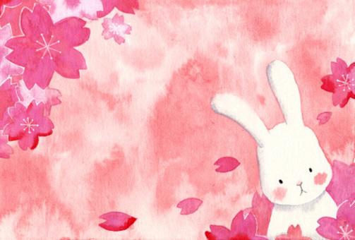 벚꽃 흩 날리는