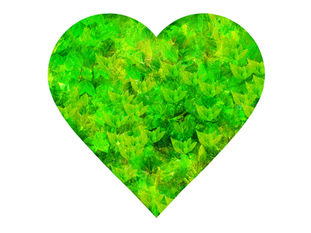 Fresh green in heart