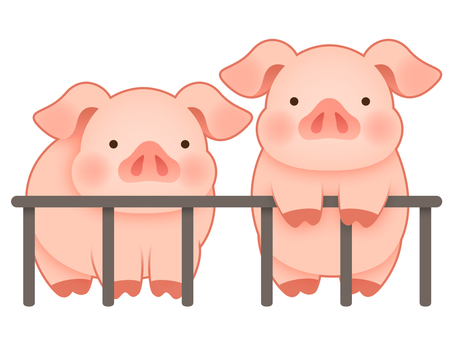 Pig pig's illustration