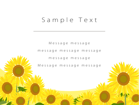 Sunflower field postcard 02