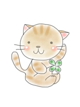 Four leaf clover and cat