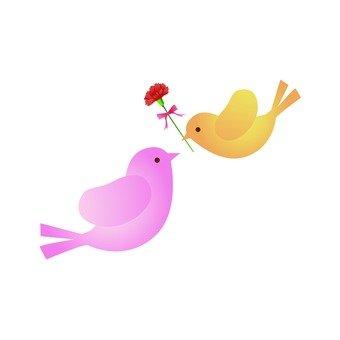 카네이션과 작은 새