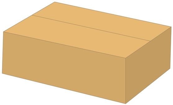 Cardboard box B2
