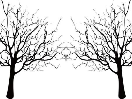 Dead wood silhouette