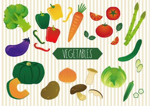 Variety of vegetables set