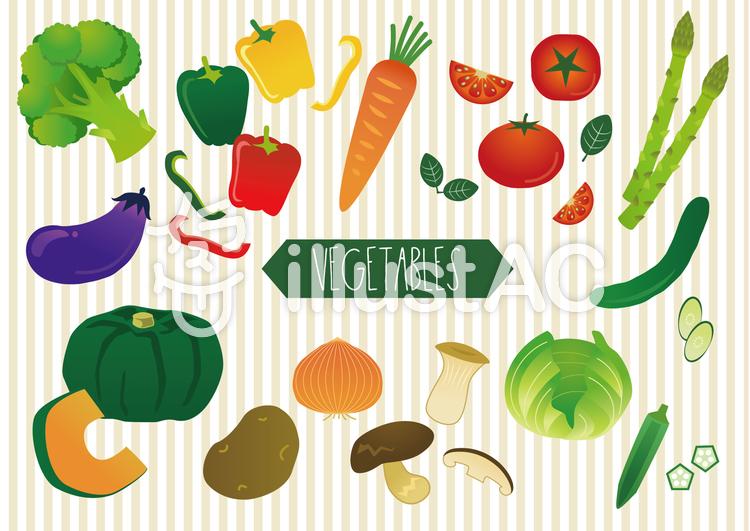 野菜色々セットのイラスト