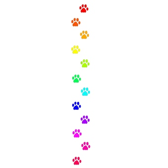 Rainbow line (Rainbow)