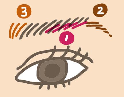 眉毛和眼睛