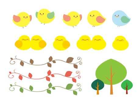 Bird material