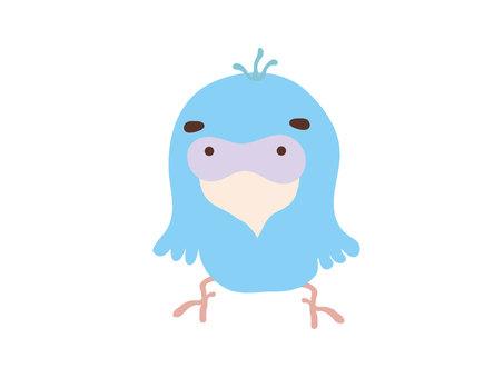Loose parrot 1