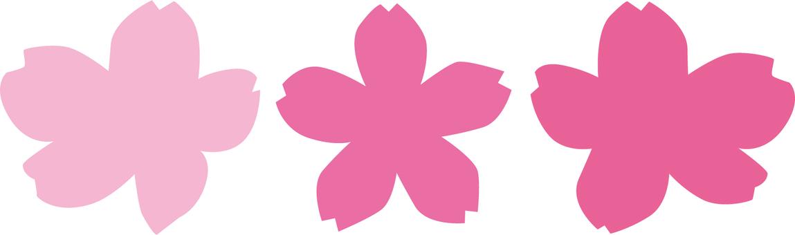 Cherry blossom petals 3 kinds