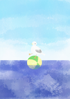 Seagull and ball