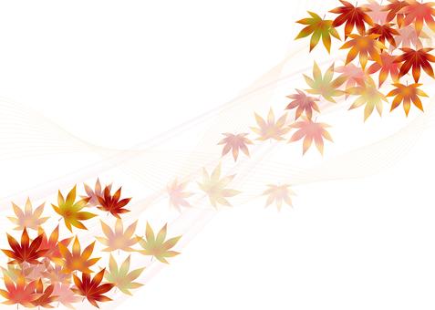 Autumn leaves 313