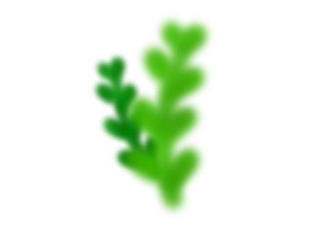 Water plants (Kimidori)