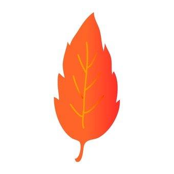 Leaves (orange)