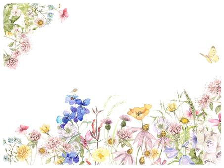 Letter Background - Full of Hato, Spring Field