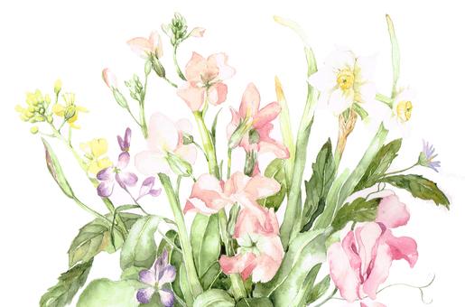 봄의 냄새 스톡 꽃