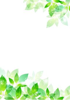 Fresh green material 141